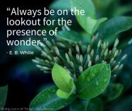 EBWhite_Wonder