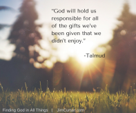 """God will hold us responsible for all of the gifts we_ve been given that we didn_t enjoy."" -Talmud"